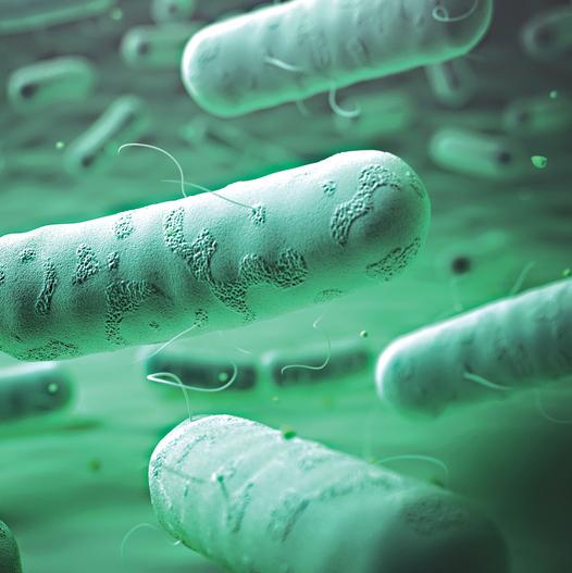חיידקי בתי חולים - נתוני פגיעה: 100,000 נדבקים בשנה |  8,000 איש בחודש |  6,000 נפטרים מהזיהומים בכל שנה - כמעט פי 20 ממספר ההרוגים השנתי בתאונות דרכים* (לפי הערכות משרד הבריאות)