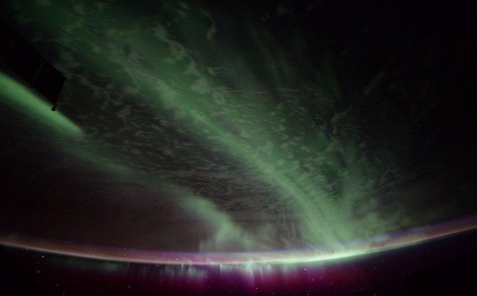 """הזוהר הצפוני מתחנת החלל (צילום: רנדי ברסניק, נאס""""א)"""