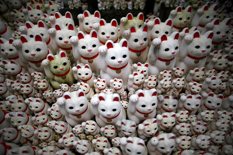 פסלי חתולים יפניים שנועדו להביא מזל טוב במקדש בטוקיו, יפן (צילום: רויטרס)