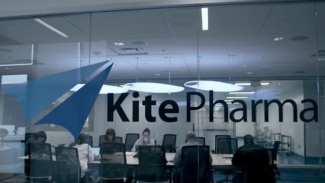 משרדי קייט פארמה (צילום: kitepharma.com)