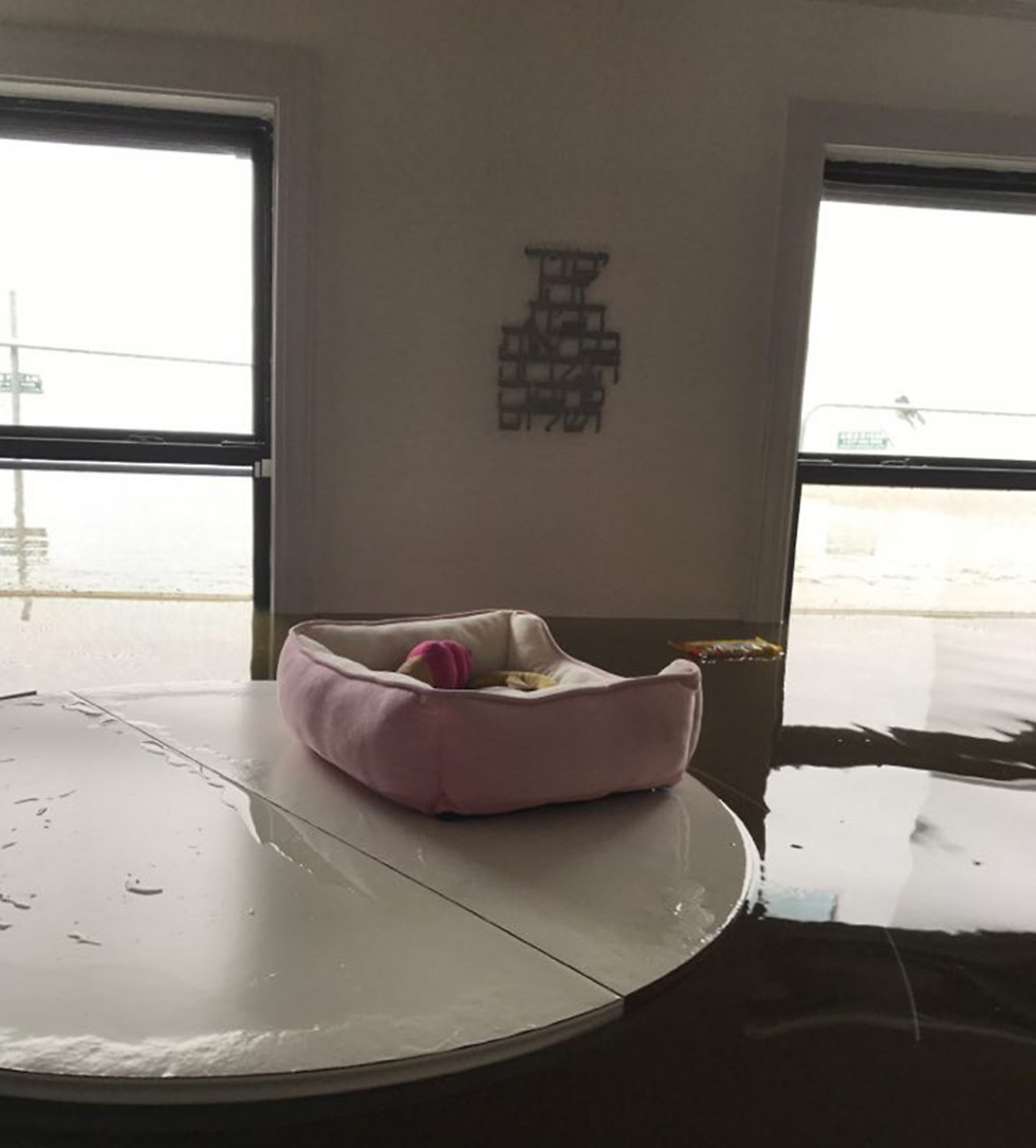 Israeli Yaniv Jerupi's flooded home (Photo: Yaniv Jerupi) (Photo: Yaniv Jerupi)