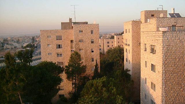 הגבעה הצרפתית בירושלים (צילום: רי/מקס חזון)