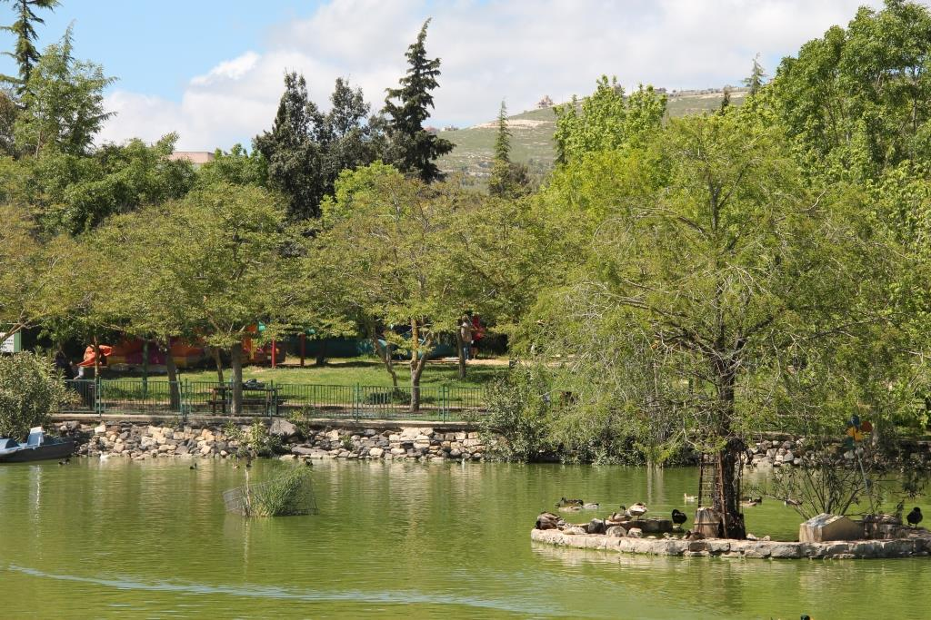 "אגם חי יראון (צילום: יח""צ)"