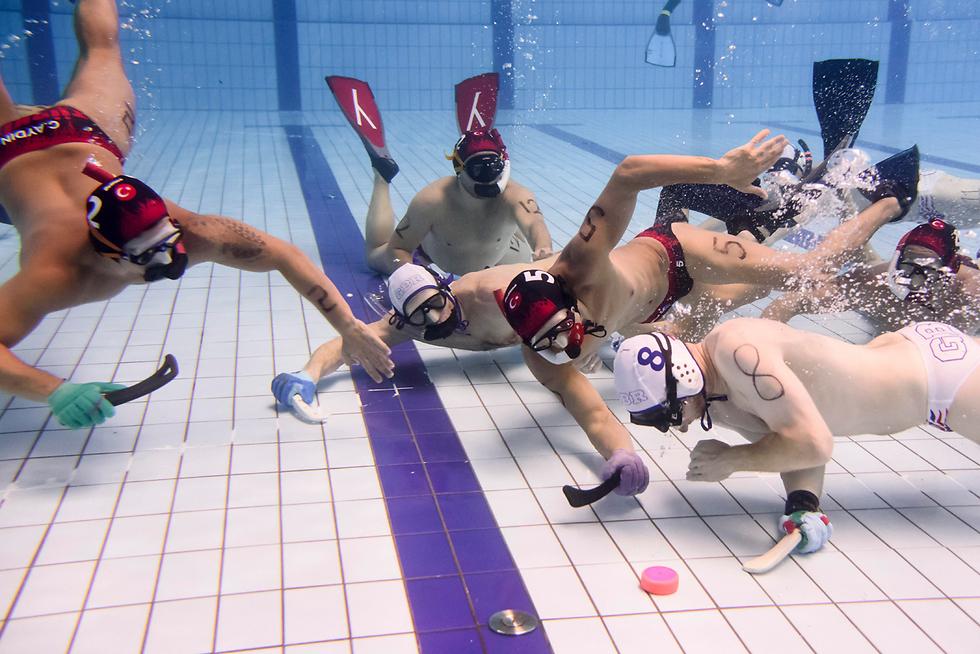 אלופת אירופה בהוקי מתחת למים, הנערכת בהונגריה (צילום: EPA)
