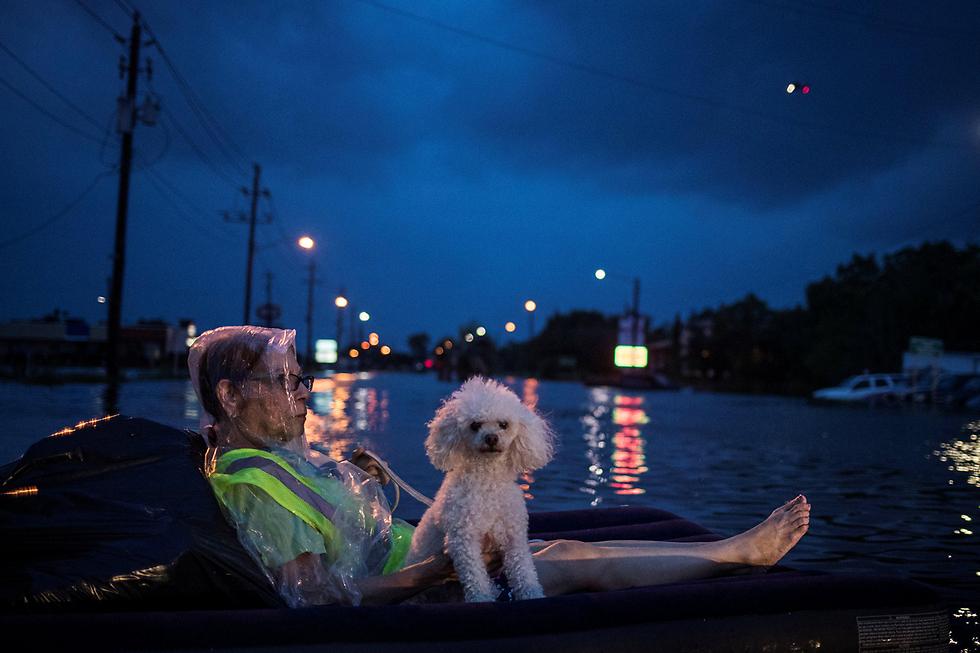 """שטים ברחובות יוסטון בעקבות ההצפות שגרמה סופת ההוריקן """"הארווי"""" (צילום: רויטרס)"""
