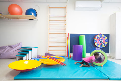 חדר הטיפולים נראה כג'ימבורי ומשמש כחדר פיזיותרפיה (צילום: דור נבו)