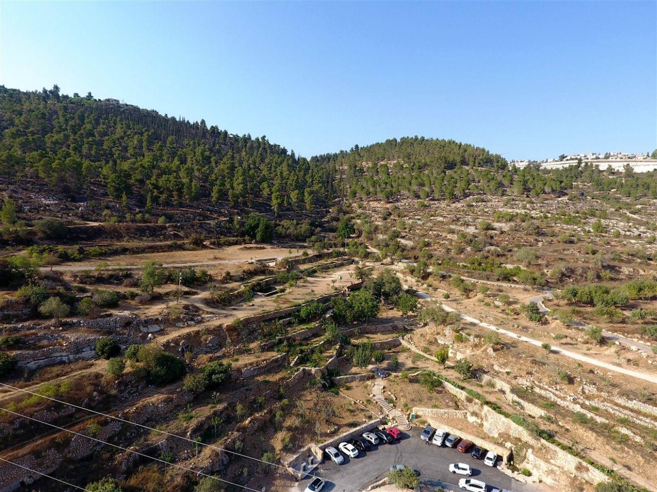 הרי ירושלים (צילום: דב גרינבלט, החברה להגנת הטבע)