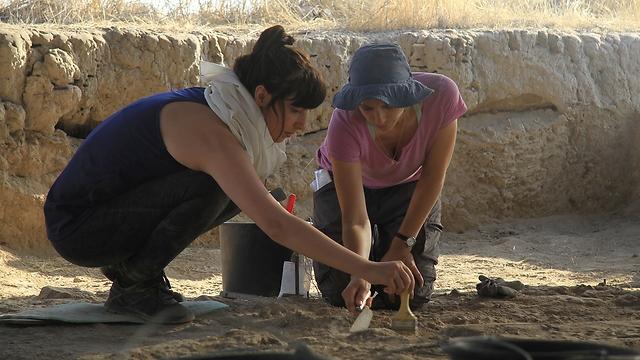 אתר החפירות בעמק הירדן (צילום: באדיבות אוניברסיטת חיפה)