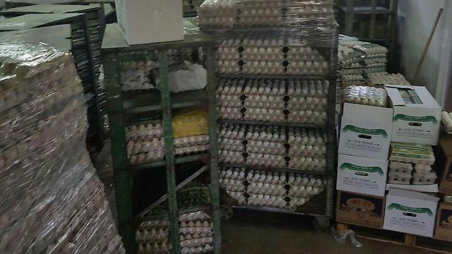 הביצים שנתפסו במחסן (באדיבות המועצה לענף הלול)