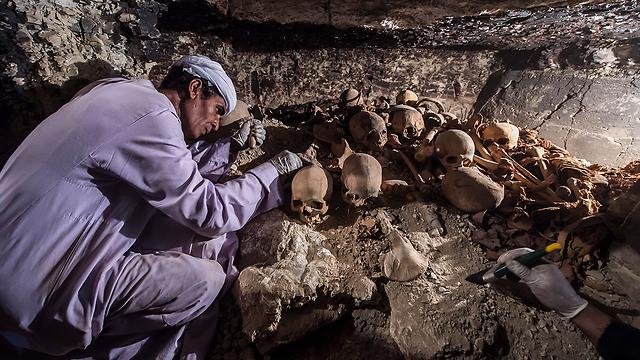 התגלית בעמק המלכים (צילום: AFP)
