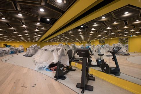 אולם המכשירים הוא שדה פלסטיק בין קירות צהובים זועקים (צילום: ליאור גרונדמן)