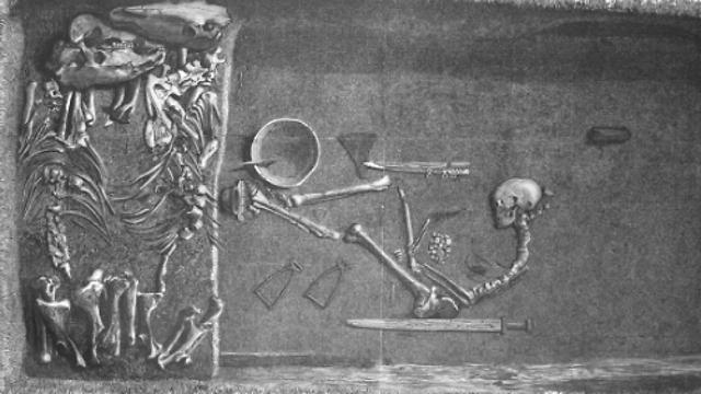 נקברה עם כלי נשק וסוסים (צילום: מתוך המחקר)
