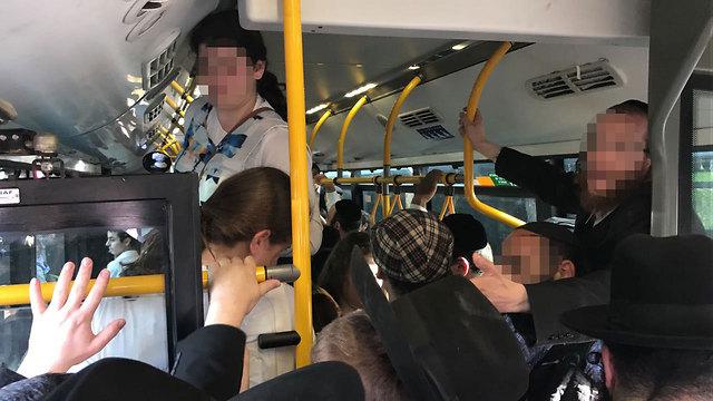 """""""40 נוסעים עומדים"""". צפיפות באוטובוסים, ארכיון (צילום: צחי רז, סוכנות הידיעות """"חדשות 24"""" ) (צילום: צחי רז, סוכנות הידיעות"""