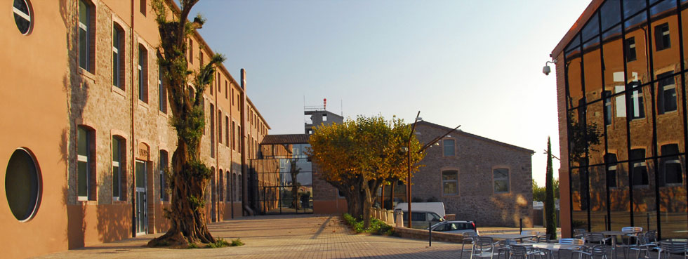 האחוזה של טוס במנרסה. מפעל ומשרדים באווירת משפחה