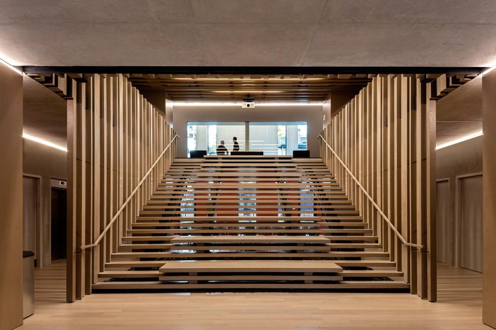 מדרגות רחבות מובילות בין הכיתות וחדרי הדיונים, שתופסים את עיקר המבנה (צילום: Richard Barnes and Stanley Saitowitz)