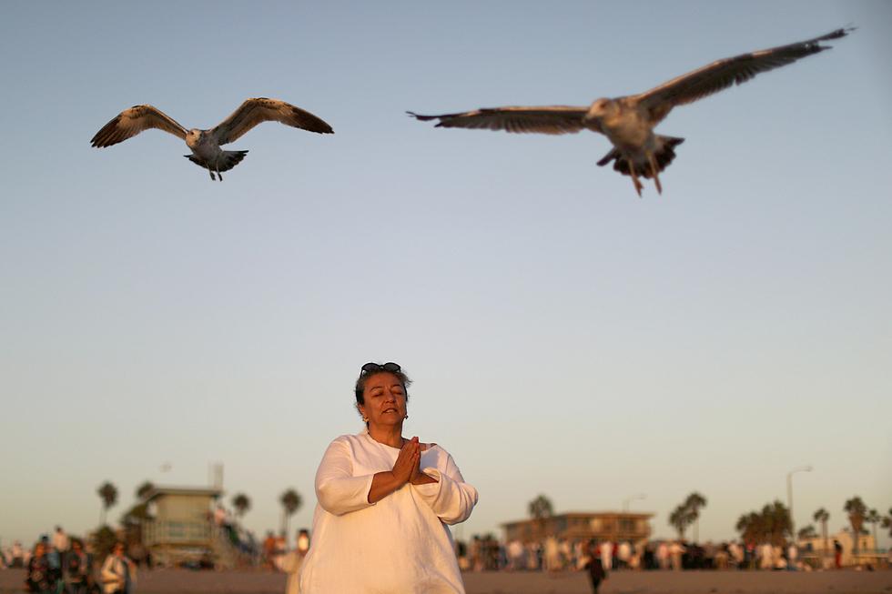 שחפים מעל אישה בתשליך של ראש השנה. לוס אנג'לס, קליפורניה (צילום: רויטרס)