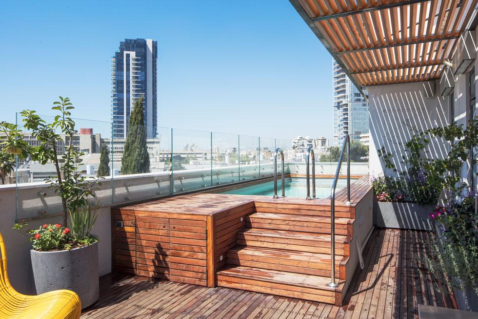 עץ האיפאה מחפה את המרפסת וגם דפנות הבריכה, שעשויה פח ומצופה פי.וי.סי בהיר (צילום: אביעד בר-נס)
