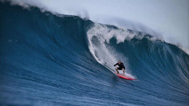 גלי זינר גולש בהוואי (צילום: גרי נייטא) (צילום: גרי נייטא)
