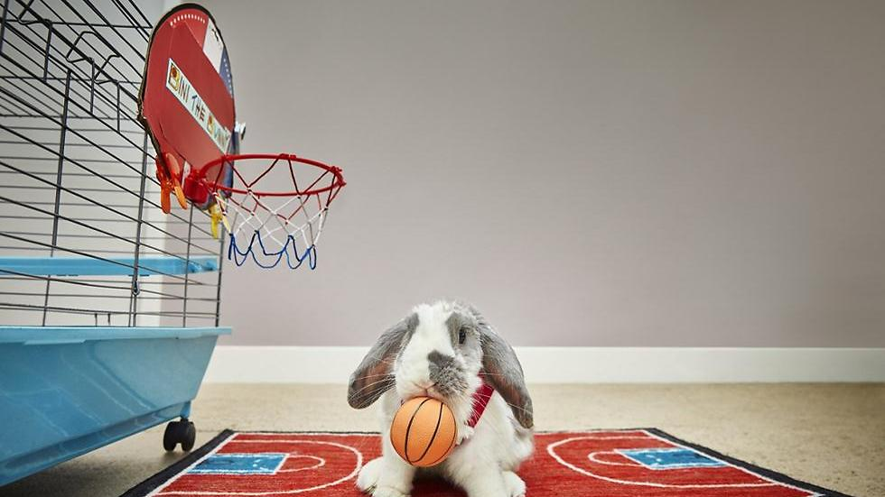 Bini poses with his basketball (Photo: Guinness World Records)