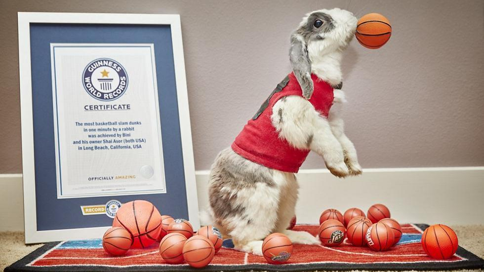 Bini and his certificate (Photo: Guinness World Records)