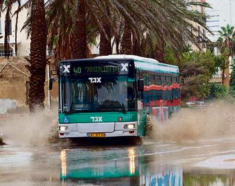 חיפה   זהירות, שפריץ   צילום: גיל נחושתן