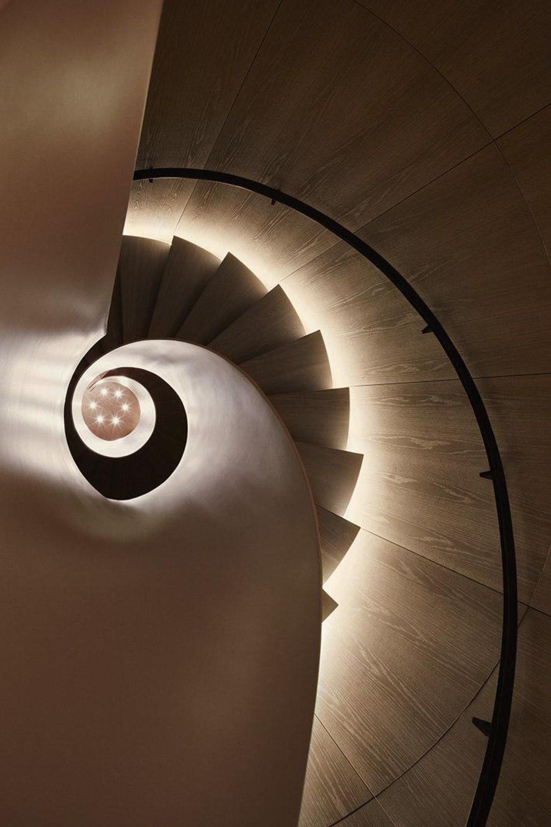 מדרגות הקונכייה, מבט מבפנים (צילום: Nikolas Koenig)