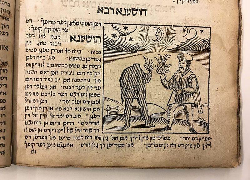 """""""דען הוט גישלאגן דער טרופל, דש ער הוט קיין קופל"""". יידיש של המאה ה-17 (באדיבות הספרייה הלאומית. חיתוך עץ מתוך הספר """"מנהגים"""", יצא לאור באמסטרדם בשנת 1661 על ידי אורי וויי)"""