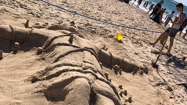 וגם תחרות פיסול בחוף (צילום: רשות הטבע והגנים)
