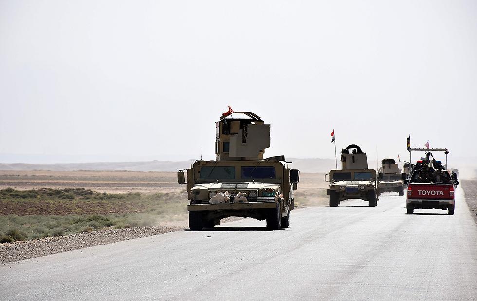 כוחות עיראקיים בעיר אל-חוויג'ה (צילום: AFP)