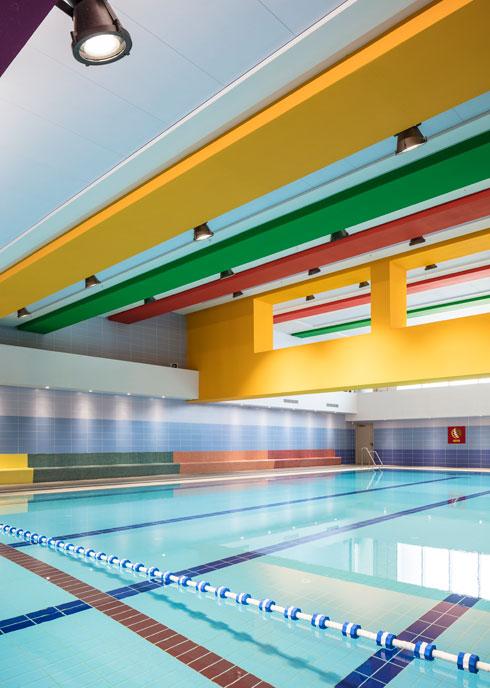 צבעוניות עליזה גם בבריכות השחייה (צילום: עמית גרון)