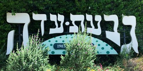 בגבעת עדה הלכו על פונט של יקב ישן על רקע ירוק (צילום: ענבל נורי)