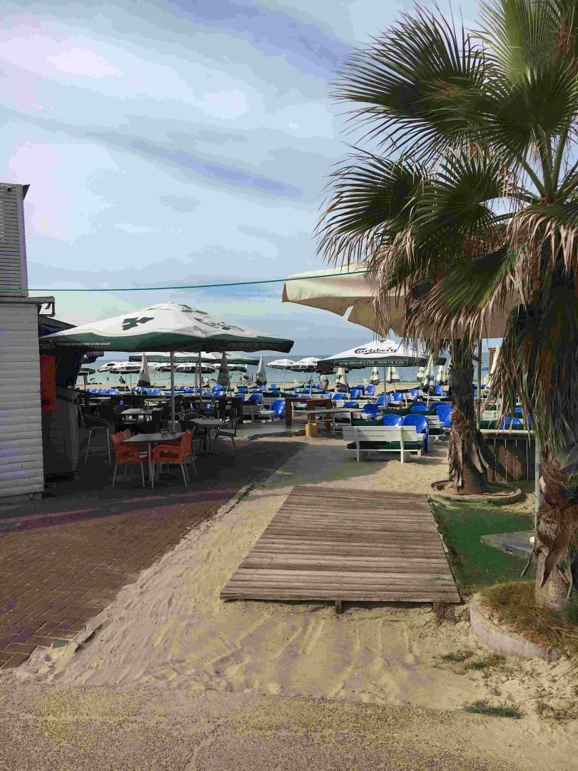 מסעדת החוף הדרומי (צילום: אגף הפיקוח) (צילום: אגף הפיקוח)