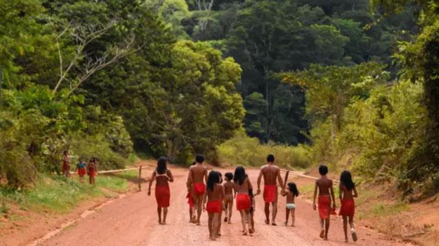 יערות הגשם באמזונס. יפלטו את הפחמן הדו-חמצני שהם סופגים? (צילום: AFP) (צילום: AFP)