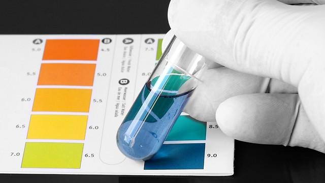 סולם pH. הצואה הפכה יותר בסיסית (צילום: Shutterstock) (צילום: Shutterstock)