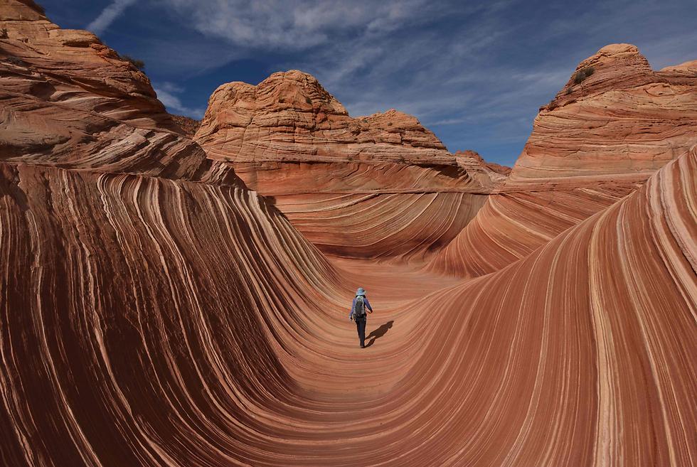 """מטייל באזור """"הגל"""", צורת סלע שנראית כמו גלים בים בפייג', אריזונה (צילום: AFP) (צילום: AFP)"""