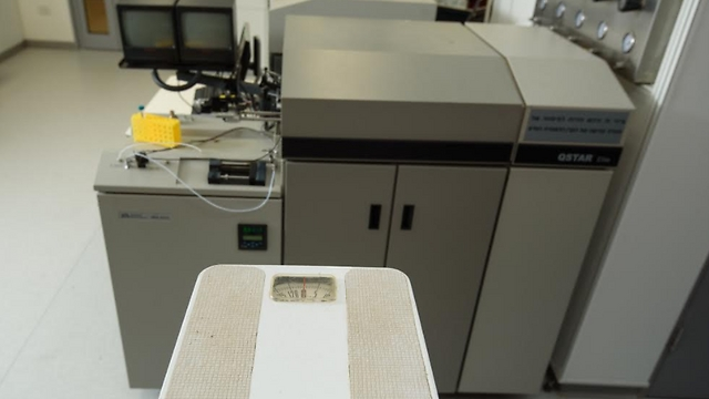 שוקלים חלבונים במעבדה (צילום: אוהד הרכס) (צילום: אוהד הרכס)