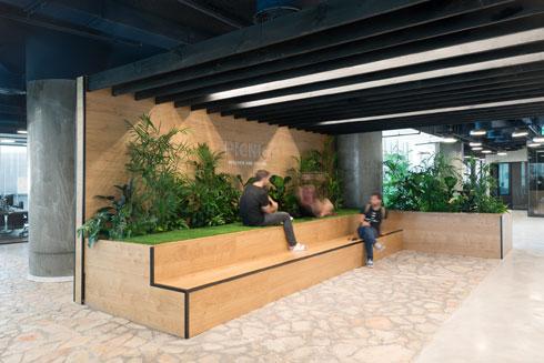 אזור הכניסה בקומה 14. אווירה של פיקניק עם טריבונה מעץ, ריצוף אבן וצמחייה (צילום: גדעון לוין)