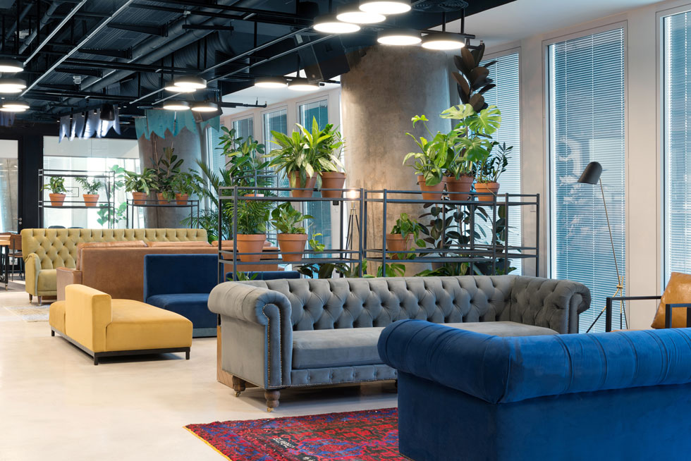 פינות ישיבה סלוניות, צמחייה שופעת ושטיחים על רצפת בטון מוחלק בקומת ההנהלה (צילום: גדעון לוין)