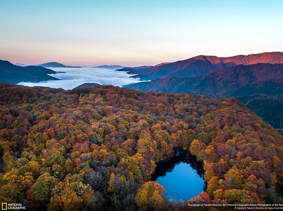 צילום אווירי במחוז אישיקווה, יפן (צילום: Takahiro Bessho)
