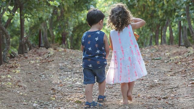 מתאים לטיול עם ילדים. הכרם בלכיש (צילום: ניצן אשוח-שאול)