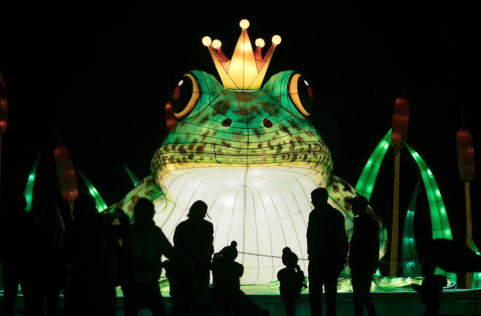 """אנשים צופים במופע """"הנסיכה הצפרדע"""" של התיאטרון האליזבתני בפסטיבל האור בעיר פרום, אנגליה (צילום: gettyimages) (צילום: gettyimages)"""