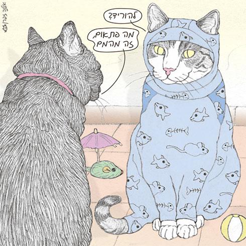 בעלת הטור ''פינת ליטוף'' תעביר סדנת קומיקס חתולית (איור: אילנה זפרן)