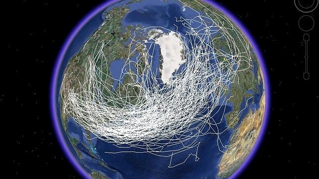 הדמיה של ריכוז אדי המים באטמוספירה של כדור הארץ (מקור: NCAR) (מקור: NCAR)