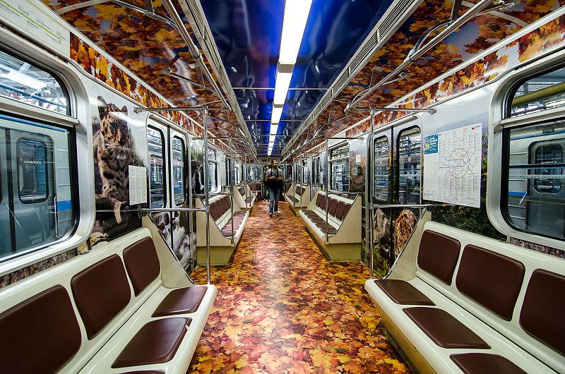 רכבת ההפתעות: אחד מהקווים היפים של רכבת אקוורל (צילום: Xenotron) (צילום: Xenotron)