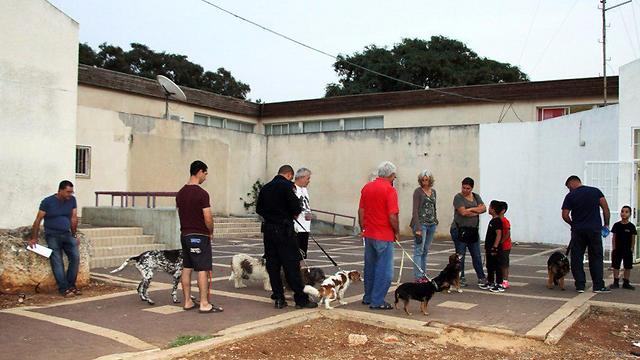 תושבי מועצה אזורית גלבוע ממתינים לחיסון חיות המחמד (צילום: המועצה האזורית גלבוע)