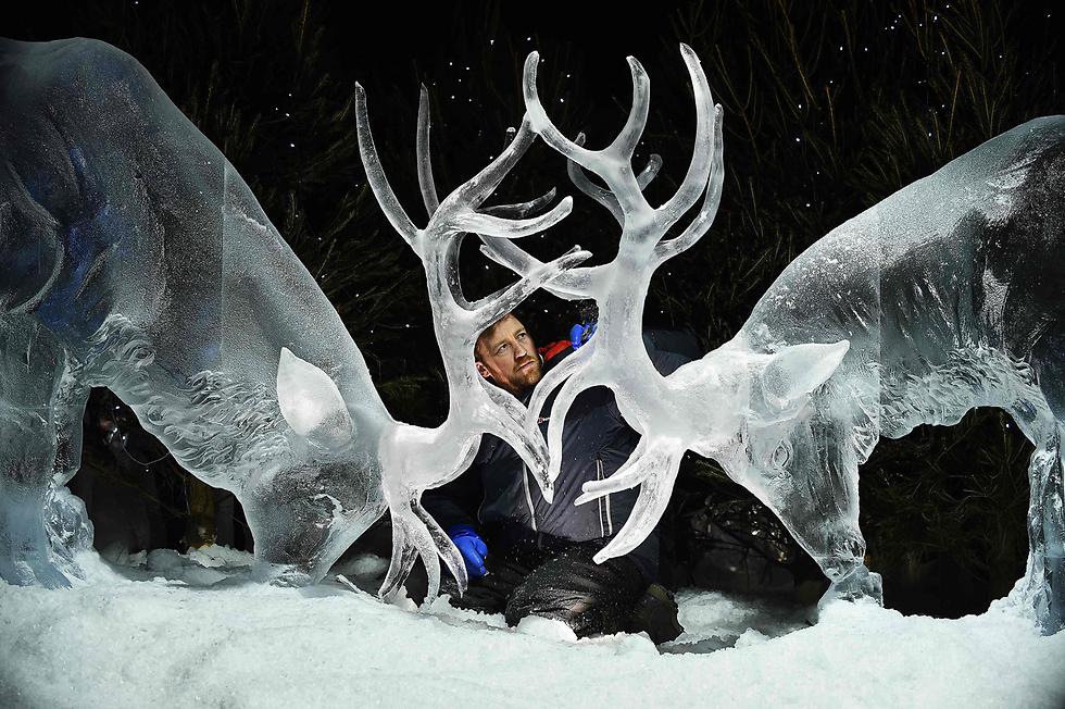 תערוכת פיסול בקרח באדינבורו, סקוטלנד (צילום: AFP) (צילום: AFP)