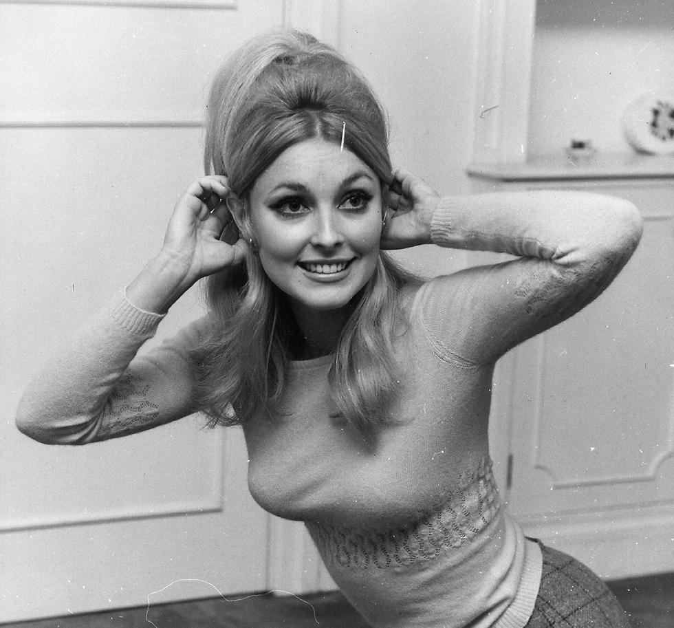 נרצחה על ידי מעריצי  מנסון והיא בחודש השמיני להריונה. שחקנית הקולנוע שרון טייט (צילום: gettyimages) (צילום: gettyimages)