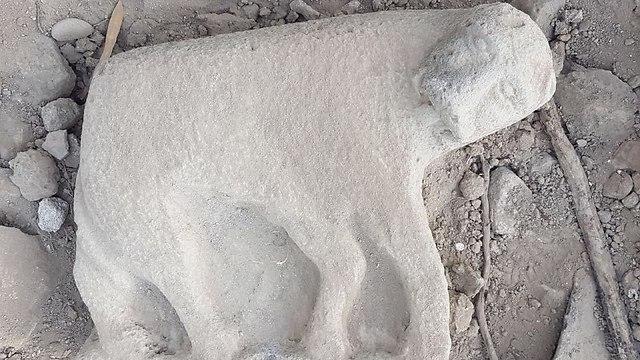 Статуя львицы. Фото: Мордехай Авиам