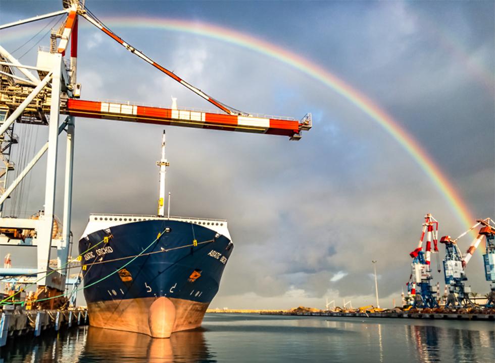 Радуга в Ашдодском порту. Фото: Шабтай Таль (צילום: שבתאי טל)