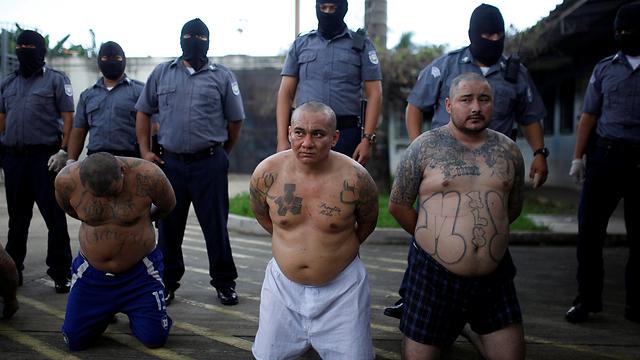 חברי MS-13 עצורים באל סלבדור (צילום: רויטרס) (צילום: רויטרס)